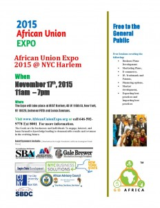 Africian Union Expo 11-7-2015 general attendee